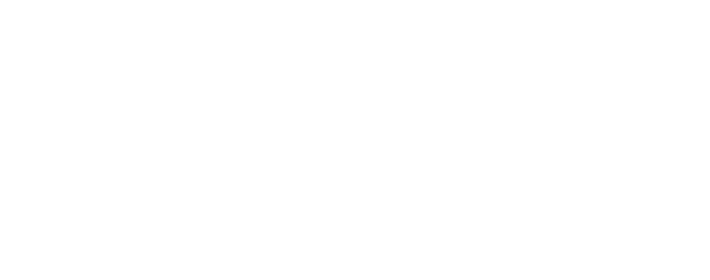 the dizzle logo
